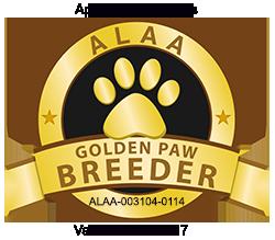 Golden Paw Breeder
